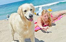 Odmor s psom